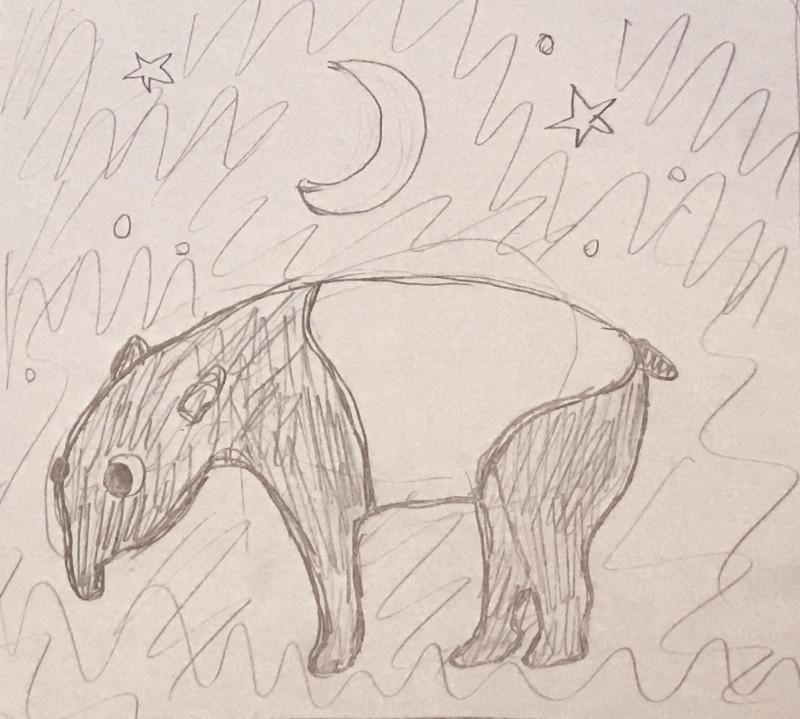tapir.rough
